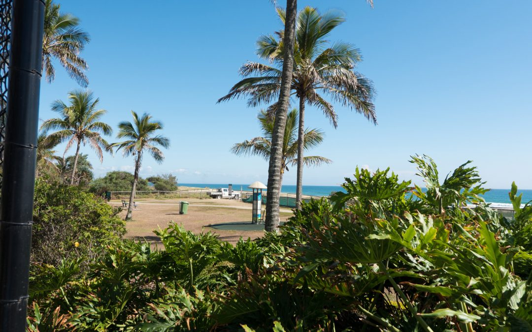 Why You Should Stay at Princess Palm on the Beach