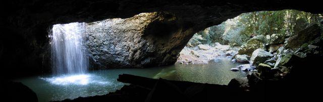 Springbrook National Park and Purling Brook Falls